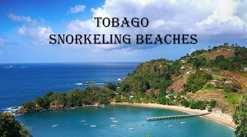 Snorkeling beach Tobago