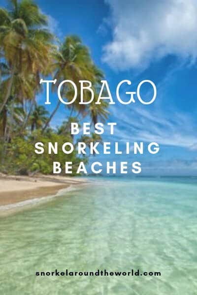 Tobago beach photo for Pinterest