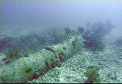 Adelaide Baker wreck