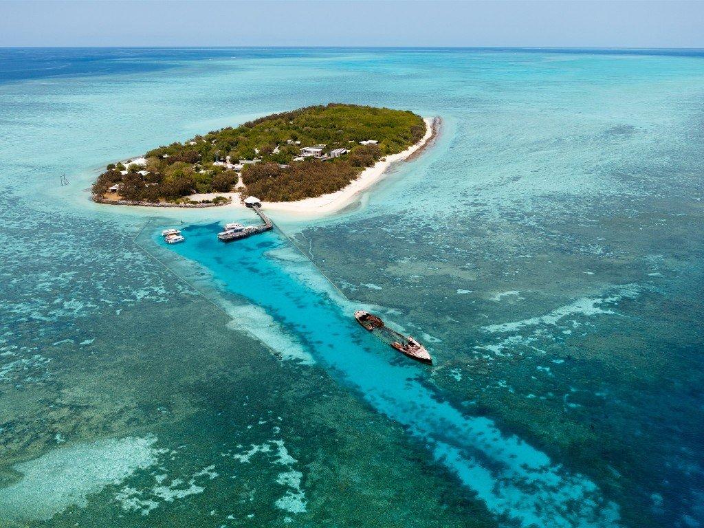 Heron-Island-snorkel