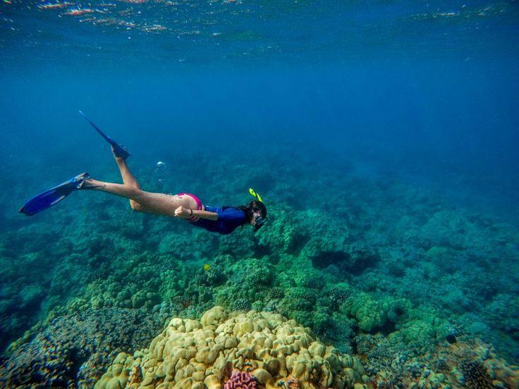 Snorkeling Ahihi Kinau Natural Area Reserve