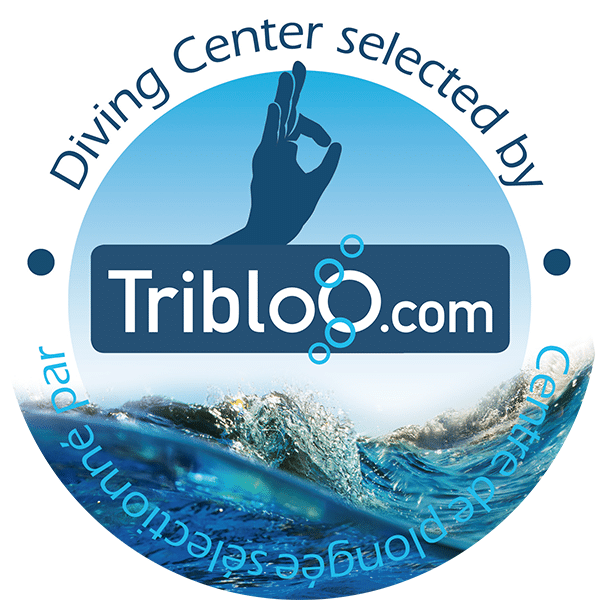 tribloo.com find the best divingcenter