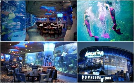 Underwater Restaurants - Aquarium restaurants USA