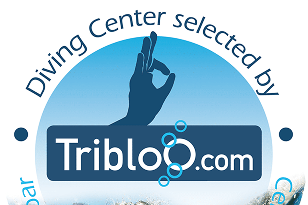 TribloO.com helps You
