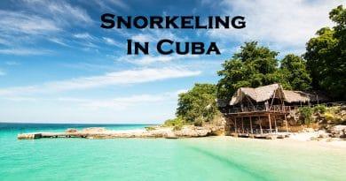 Snorkeling in Cuba