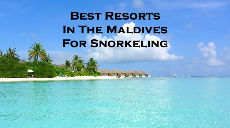 best resorts in the maldives for snorkeling