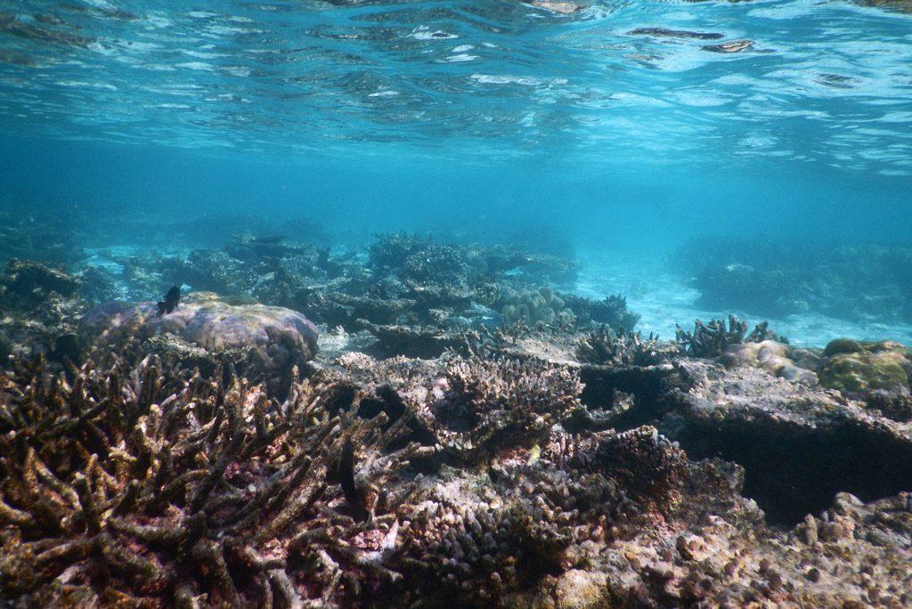 El-Nino-Maldives
