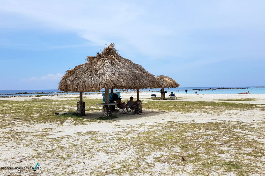 Baby-Beach-Aruba-Snorkeling