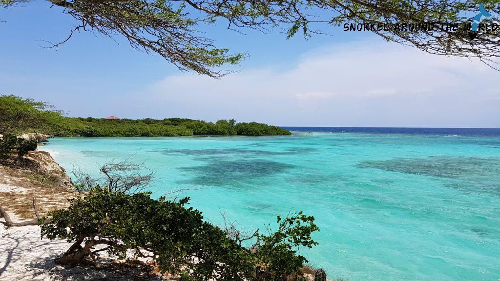 Mangel Halto Snorkeling - Aruba