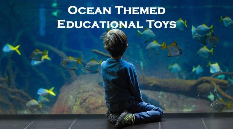 Ocean Themed Education Toys