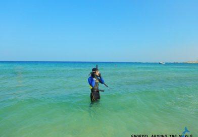 Abu Dabbab Starting Snorkelling