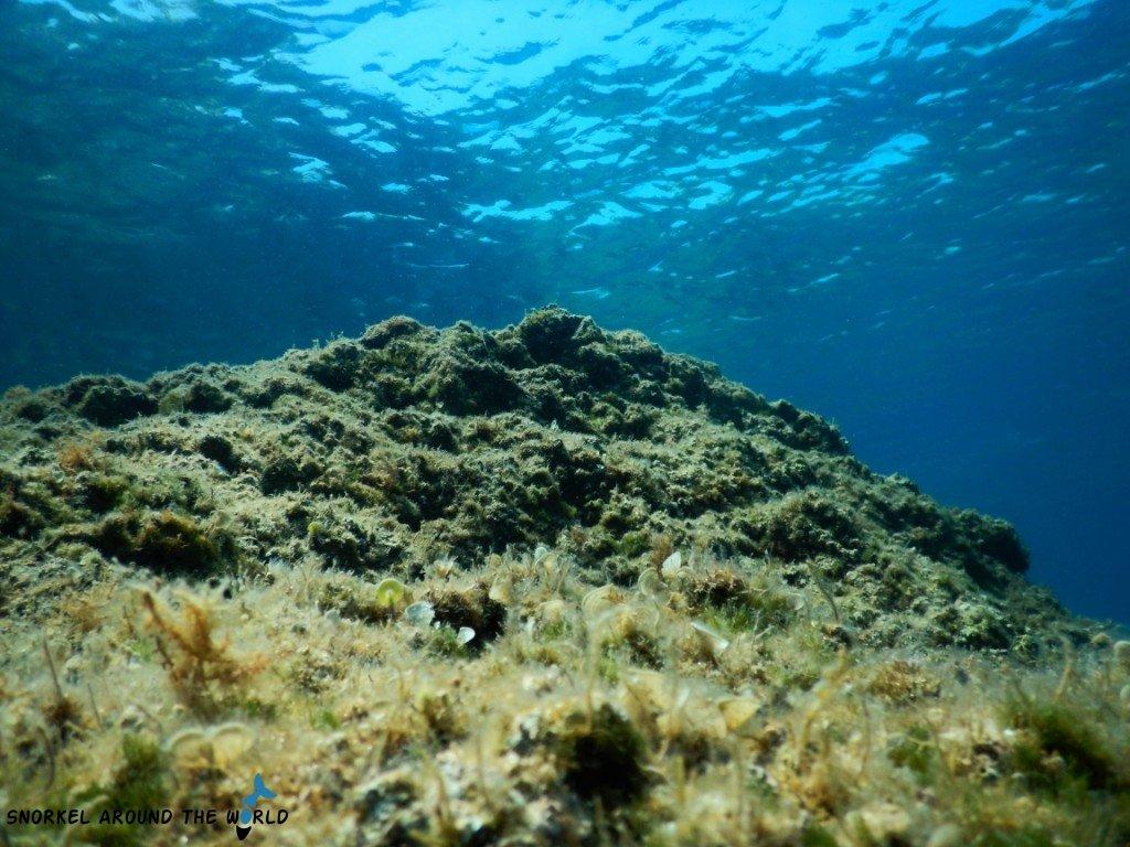 Adria underwater