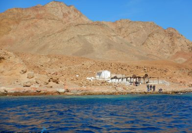 Dahab Bells - Diving