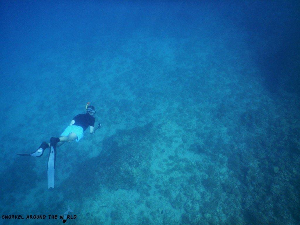 Freediving - Croatia