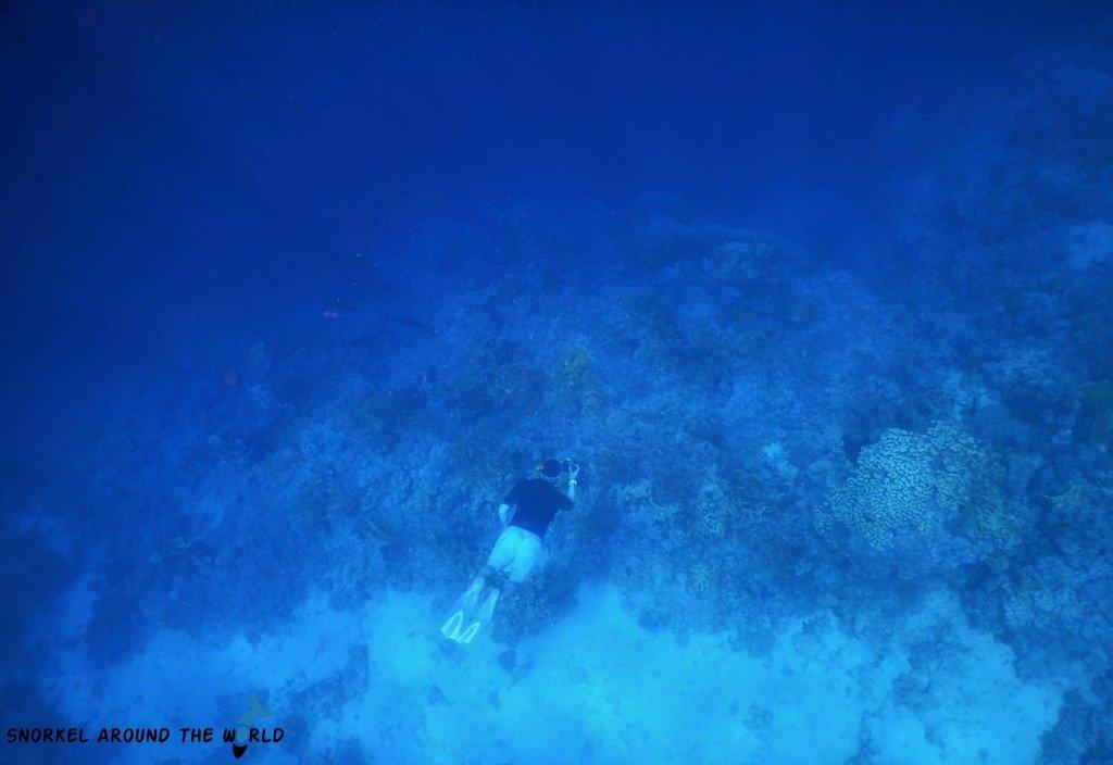 Sharm El Sheikh - Freediving