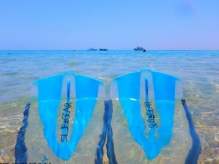 Sharm El Sheikh - Snorkeling holiday