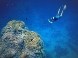 Sharm El Sheikh best snorkeling place