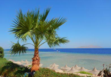 Sharm el Sheikh - Ras Nasrani Snorkling