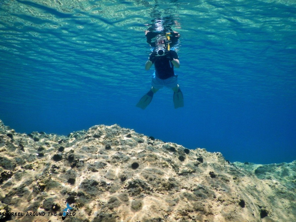 Snorkeler in the Adria