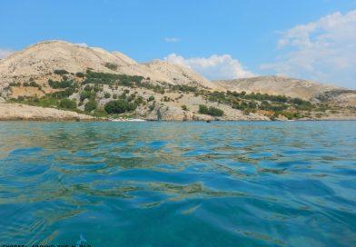 Stara Baska Snorkel trip