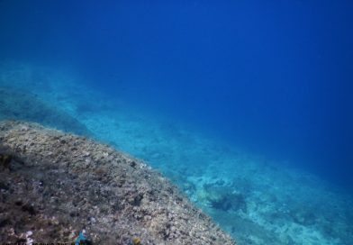 Sveti Marak Krk underwater