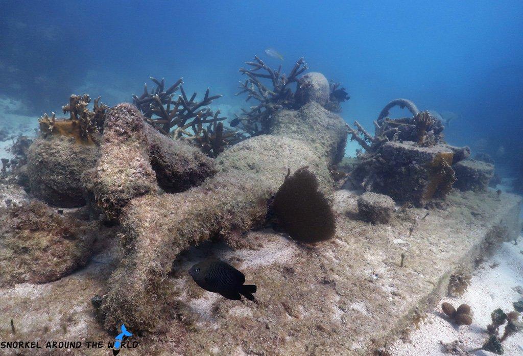Gardener - Underwater museum