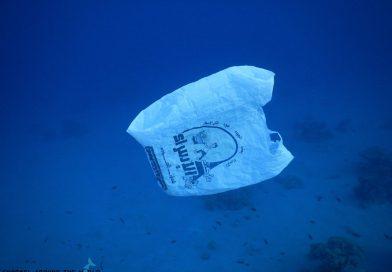 Marine garbage