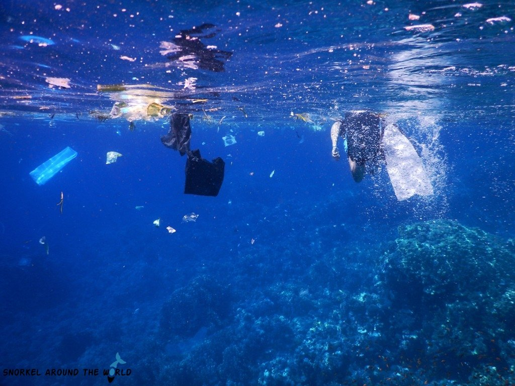 Plastic in the Sea