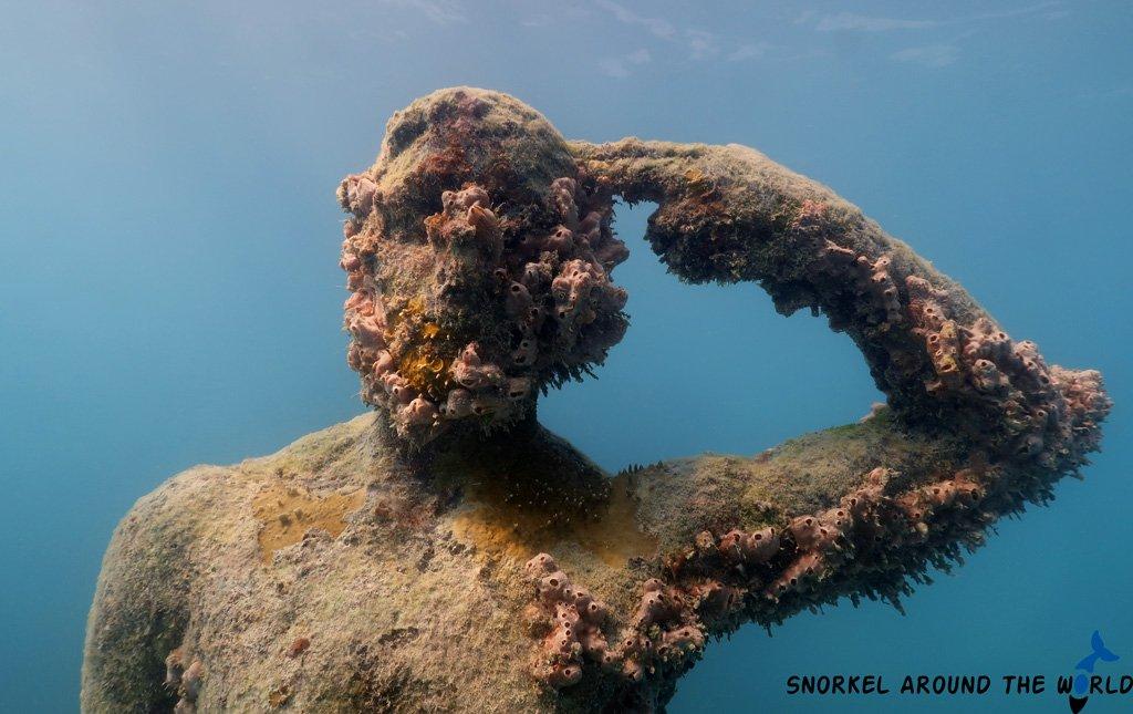 Punta-Nizuc - Snorkeling notitle