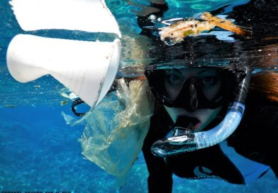 Snorkel with trash
