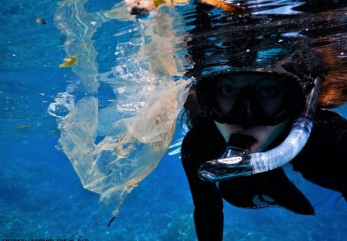 Snorkeling in trash
