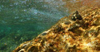 Underwater view Adria
