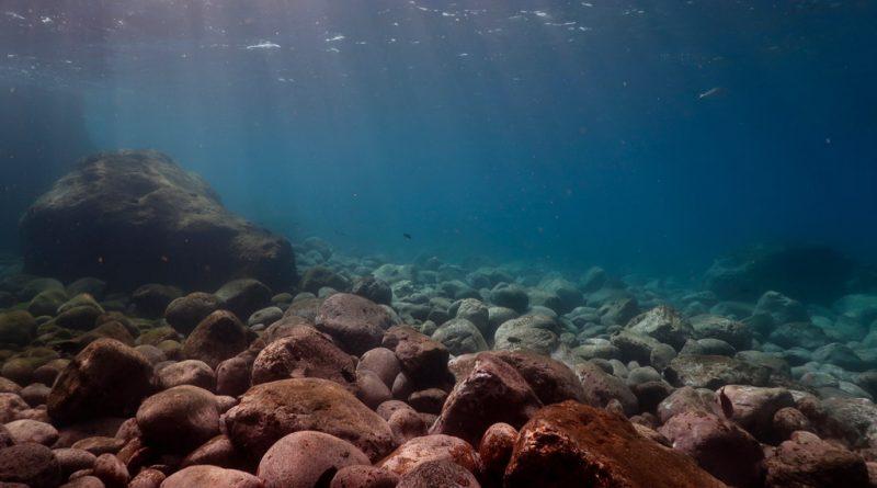 Unterwasser Landschaft