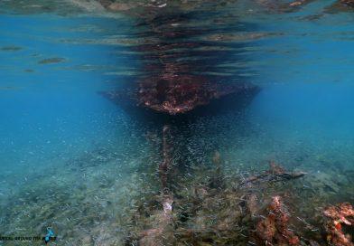 Aruba shipwreck Baboo
