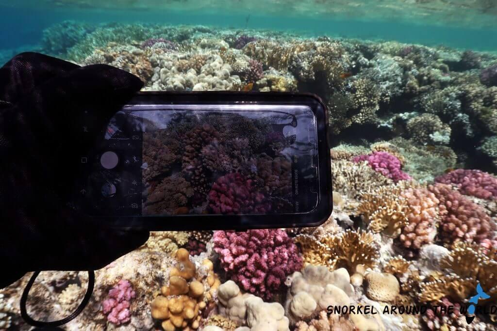 samsung smartphone in underwater case