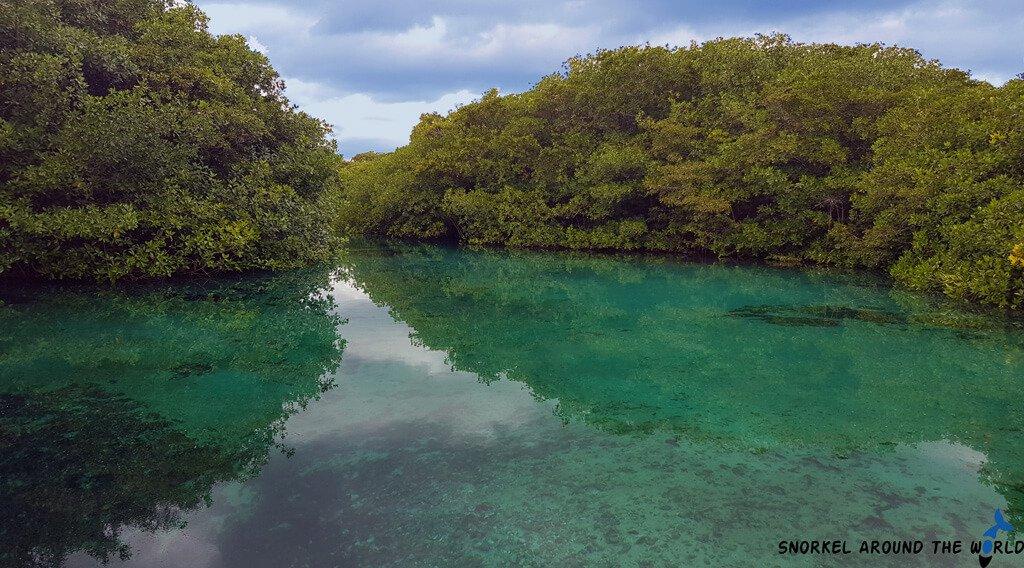 Cenote Mexico Tulum