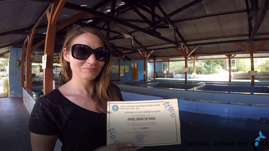Turtle adoption certificate
