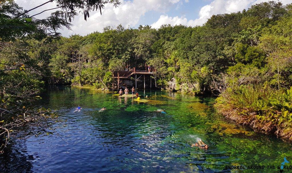 Cenote snorkeling trip -Tulum