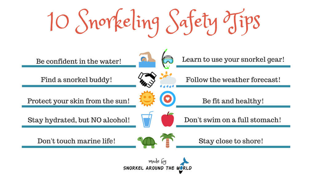 10 Snorkeling Safety Tips Infographic, Snorkeling Guide