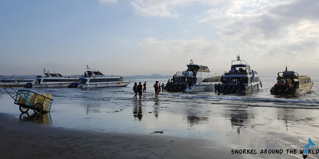 Speedboats in Sanur MolaMola Express, Angel Billabong Fast Cruise, Dwi Manunggal