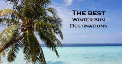Best winter holiday destinations - Palm tree in Maldives
