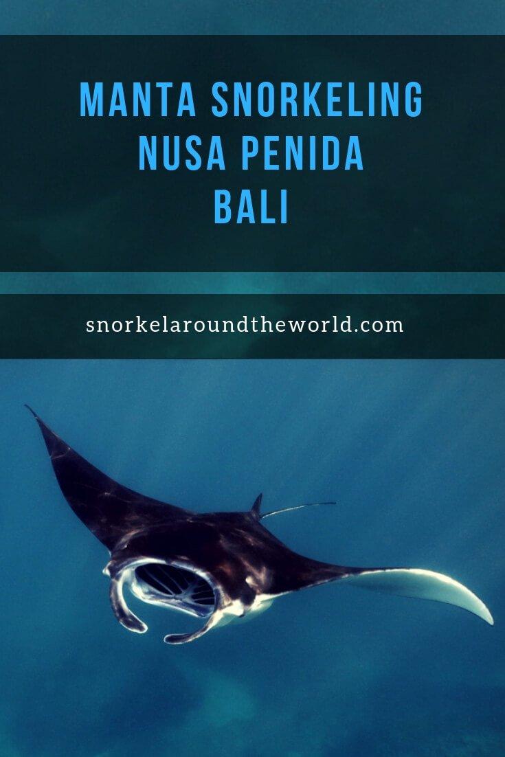 Snorkeling Manta Bay - Nusa Penida Pinterest