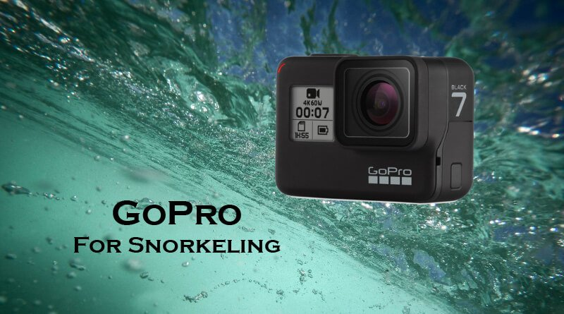 Gopro for snorkeling index image