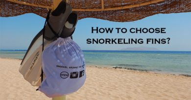 Snorkeling fins on the beach under an umbrella