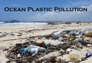 Ocean plastic pollution – Causes, effects and solutions