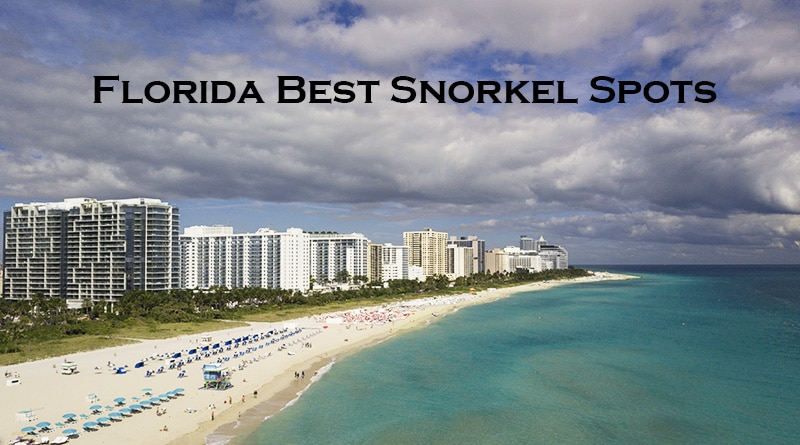 Snorkeling In Florida Best Spots 2020 Snorkel Around