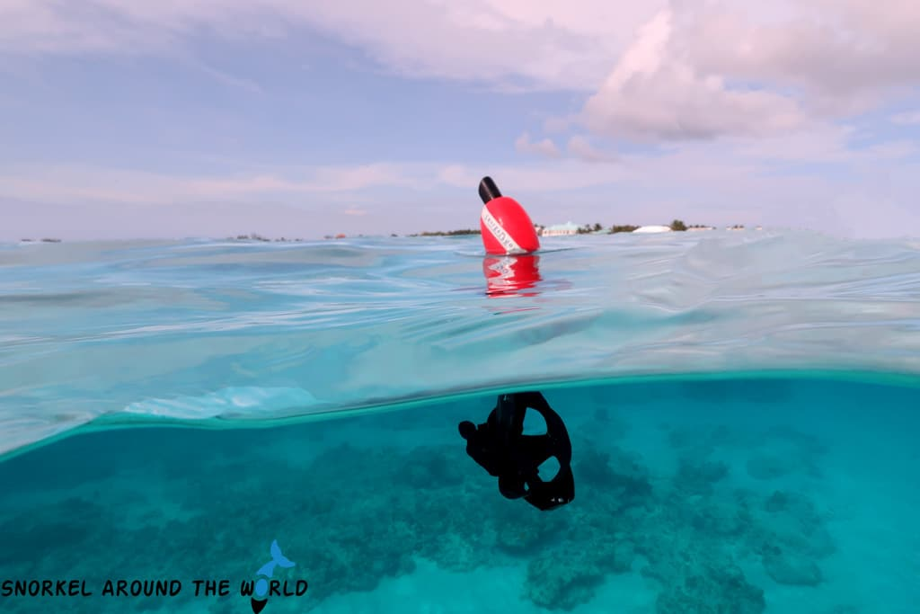 Snorkelbuoy - This tiny foam can help to keep you visible in the water