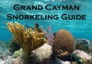 15 Grand Cayman snorkeling beaches – Best spots to visit
