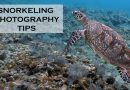 Snorkeling photography tips
