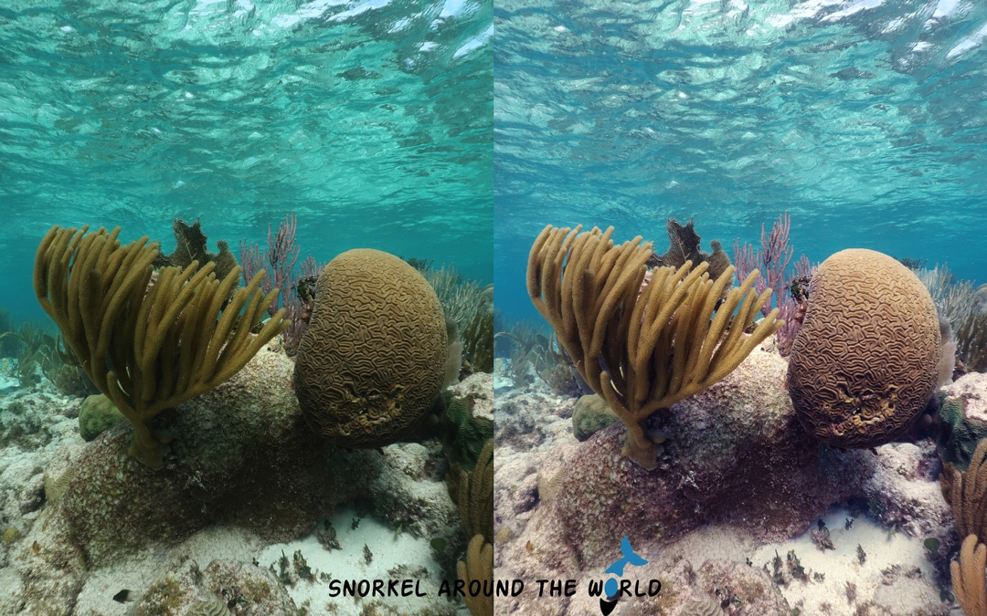 Underwater photo before and after editing